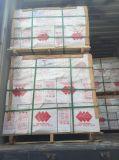 azulejos de piso de cerámica de los 30X30cm (3213)