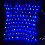 Indicatore luminoso netto del LED per la decorazione dell'albero di festa del giardino di Christams