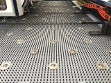 Drehbank des CNC-Servoserien-Hochgeschwindigkeitslocher-Press/CNC mit ISO/SGS