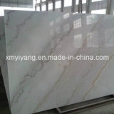 Wall Flooring (YQC-MS1002)를 위한 대중적인 Polished White Jade Marble Slab