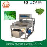 Blätter Waschmaschine und Bananen-Blatt-Unterlegscheibe mit Pinsel