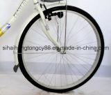 28 '' وحيدة أنابيب فولاذ نمر دراجة/دراجة لأنّ إمرأة ([ش-ك010])