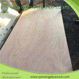 [بروفسّيونلّ] باب حجم [أكووم] خشب رقائقيّ صاحب مصنع