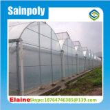 El sistema hidropónico con efecto invernadero precio de fábrica de plástico de Cine de Flores