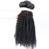 Le cheveu crépu de bonne qualité d'enroulement rapièce le cheveu cru de Brésilien de cheveux humains