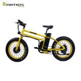 Bici eléctrica de la potencia verde 26 pulgadas para la venta
