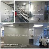 Подгонянная комната охлаженная конструкцией с панелями полиуретана и дверями шарнира