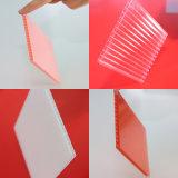 Leistungsfähiges Stärken-Höhlung-Polycarbonat-Blatt des Baumaterial-10mm