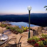12W imperméabilisent l'éclairage LED solaire inoxidable de pouvoir vert extérieur
