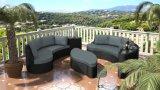 Furnir bon T-058 jeu spécial de sofa de modèle de meubles de jardin de rotin de 3 parts