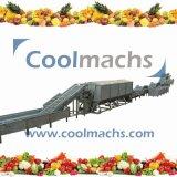 Frozen Vegetable Green Bean / Carrot / Sweet Corn / Chou-fleur / Ligne de production