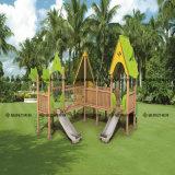 Enfants de plastique en bois de modèle spécial d'intérieur/cour de jeu extérieure