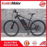 電気MTBの電気バイクEbike