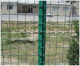 Geschweißter Maschendraht-Zaun-Panel-Kettenlink-Zaun