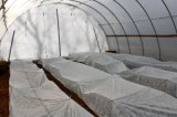 Tela não tecida da tampa do Polypropylene para o uso agricultural