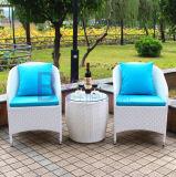 PEの藤の家具裁判所の椅子セット
