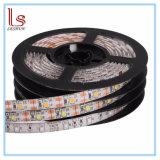 온난한 /Cool 백색/RGB 방수 유연한 LED 지구 끈 빛