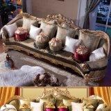 Sofa de tissu/sofa de salle de séjour (D962A)