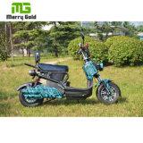 Motorino elettrico ad alta velocità 1000W per gli adulti