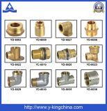 Nickel überzogenes Messingkomprimierung-Rohrfitting - (YD-6054)