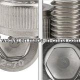Käse-Haupthexagon-Kontaktbuchse-Kopfschrauben-Fabrik der Edelstahl-Schrauben-304 von China DIN912