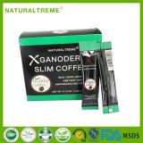 Alimento natural Ganoderma Lucidum que Slimming o café Tailândia