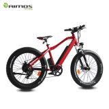Verstecktes Gummireifen-preiswertes elektrisches Fahrrad der Batterie-26*4.0 fetter des Zoll-350W