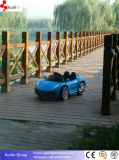 Kinderen Electric Ride op Car/Electric Car voor Children met Afstandsbediening