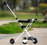 Baby-Laufkatze-Wanderer 3 in 1 Dreirad scherzt Spaziergänger