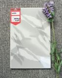 tuiles glacées blanches de mur intérieur de 20X30cm