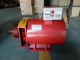 발전기 가격 발전기 5kw 단일 위상 AC Stc 유형