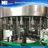 De hete Machine van het Flessenvullen van het Glas van de Verkoop voor Sap met Ce