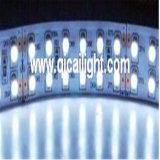 비 방수 2835 SMD LED 지구