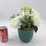 El color de rosa de la decoración de la oficina florece bonsais