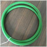 Courroie rugueuse d'unité centrale de joint circulaire vert