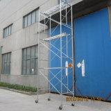 Armatura sicura dello SGS di Zds nella costruzione
