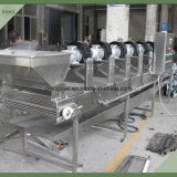 Lavado y secado de la máquina de aire para las bayas