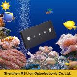 Tanque de peixes decorativo agradável LED 169W Luz de aquário LED para aquário de peixes falsos Luz de noite 12V