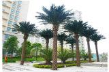 공장 공급 실내 옥외 사용 훈장 인공적인 플랜트 대추 야자 나무