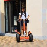 Elektrische Blokkenwagen van de Volwassenen van het Skateboard van de Autoped van de Jonge geitjes van de Zwerver van de wind de Goedkope Elektrische