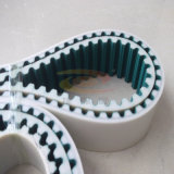 Spezielles Rpp8m Timing Belt mit Red Glue