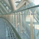 La fabbrica fornisce alla balaustra di vetro dell'inferriata dell'acciaio inossidabile migliore qualità