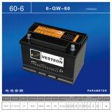 Ausgezeichnete Mf-Autobatterie