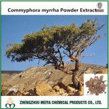 Premier extrait de poudre de Commyphora Myrrha d'approvisionnement de constructeur avec Bisabolol