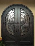 Antike Roheisen-Eintrag-Sicherheits-Türen für Haus