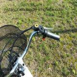 Triciclo eléctrico del transporte de cargo de más viejos hombres (RSEB-704)