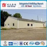Almacén industrial del edificio de la estructura de acero de la vertiente del bajo costo
