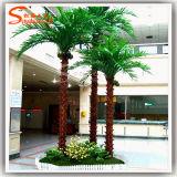 Árvores de fruta tropical artificiais da palmeira das plantas decorativas