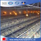 Heißes galvanisiertes China-kundenspezifisches Huhn-Bauernhof-Großhandelsgeflügel sperren für Verkauf ein