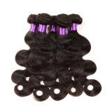 人間の毛髪のOmbreの加工されていないブラジルの拡張ブラジルのバージンの毛ボディ波